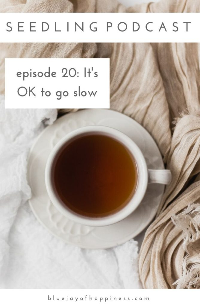 Seedling podcast - its OK to go slow