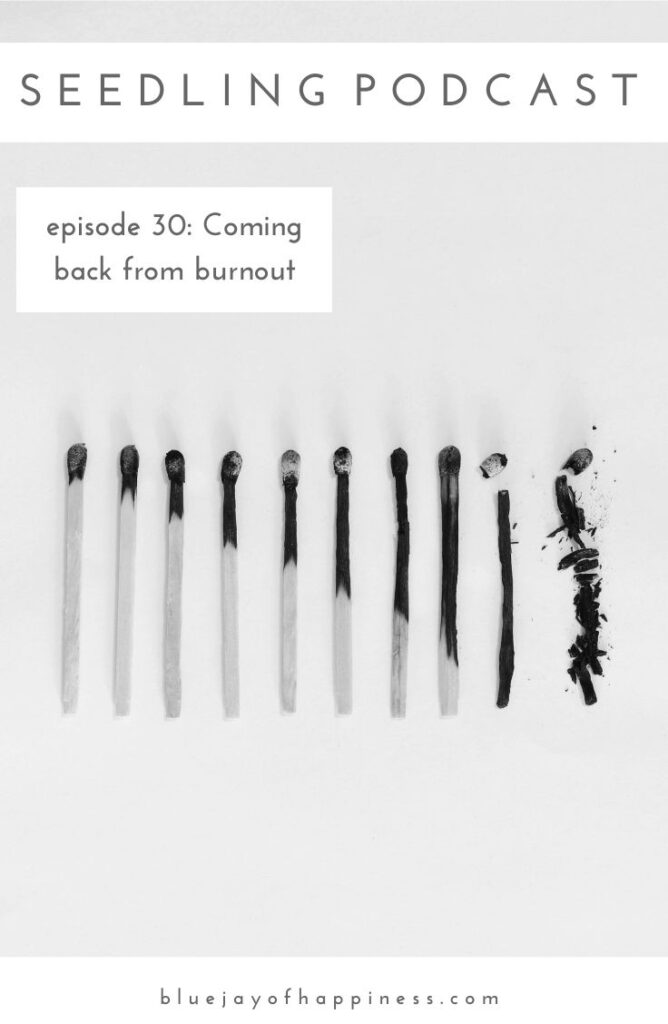 Seedling podcast episode 30 - coming back from burnout