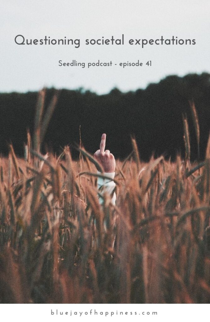 Seedling podcast episode 40 - Questioning societal expectations